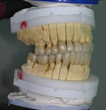 ge_dentist_or_specialization_27